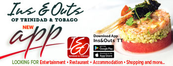 Ins & Outs Footer